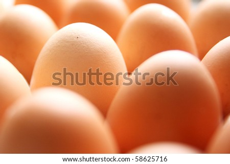 Close-up of Eggs - stock photo