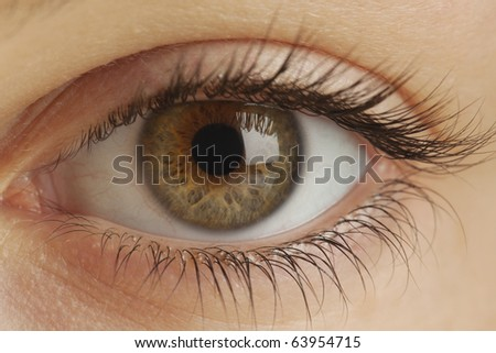 Close-up of eye