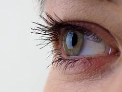 Close-up of eye, the human eye sideways