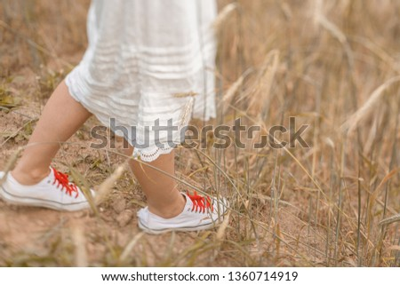 Close-up of feet walking on the golden wheat at sunny day. Enjoying nature. Beautiful girl in the rays of sunlight. Sunlight. #1360714919