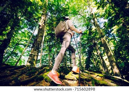 Shutterstock Close-up of female hiker feet walking on forest trail.