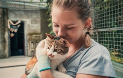 Close-up of female volunteer holds on hands cat in shelter. Shelter for animals concept