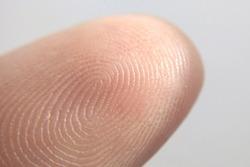 Close-up of fingerprint texture of finger skin macro photography