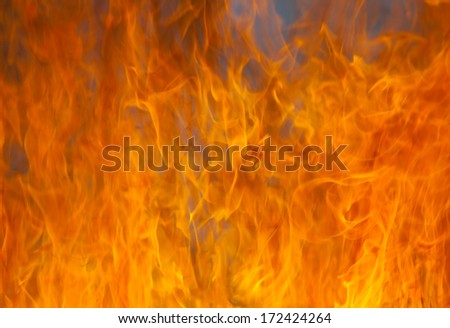Close-up of fire and flames #172424264