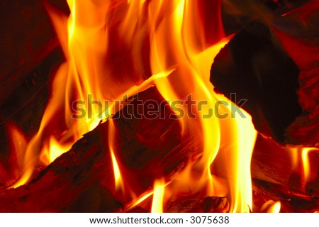 Close-up of fire burning on the logs in a fireplace.