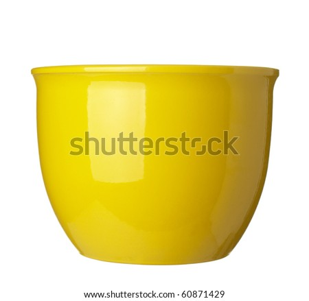 close up of   flowerpot  on white background
