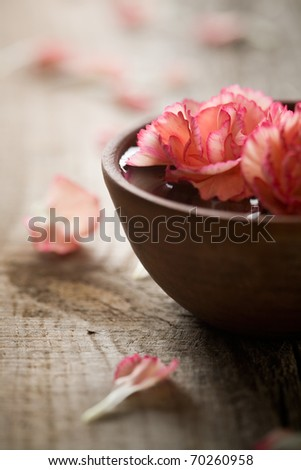 Close up of flowers floating in bowl of water