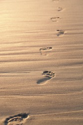 Close up of footprints on the beach sand at the sunset with copy space