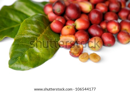 Close up of fresh raw coffee beans with leaf isolated on white background, selective focus.