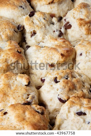 Close up of freshly baked fruit scones