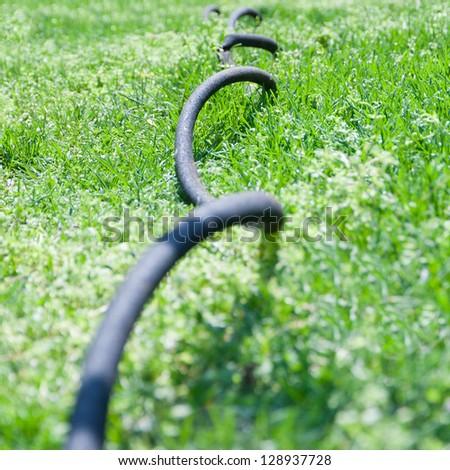 Close up of garden hose in grass, selective focus, shallow dof