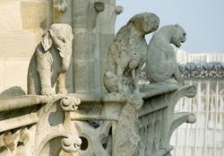 Close-up of gargoyles on the top of Notre-Dame de Paris