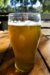 Close-up of glass of lager or gold beer or lager, on wood in outdoor bar, beer park