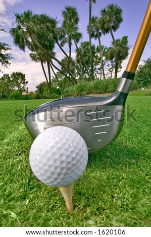 close-up of golf ball on tee with driver ready to tee off, palm trees in background