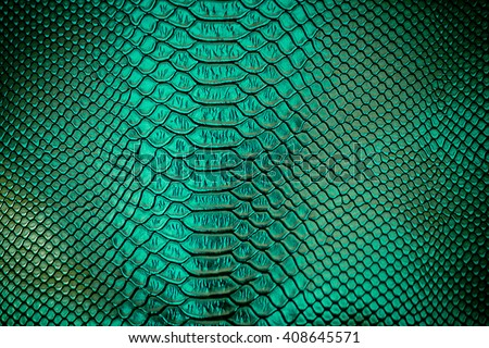 Close up of green Luxury snake skin texture use for background #408645571