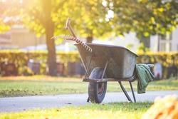 Close up of grey wheelbarrow in a park, gardening