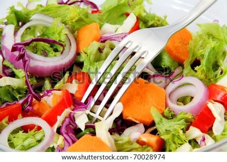 close-up of Healthy Fresh Salad