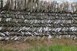 Close up of herringbone pattern dry stone wall, Cornwall