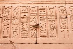 Close up of hieroglyphics at Edfu Temple with live bird perched on wall, Edfu, Egypt