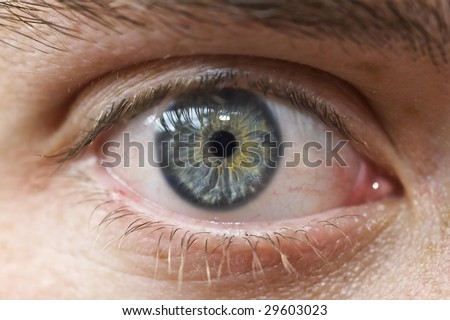 Close up of human eyeball