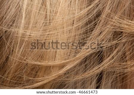 Close-up of human hair