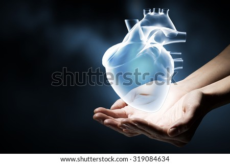 Close up of human hands holding human heart #319084634