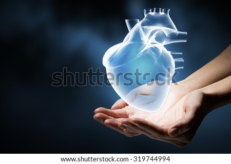 Close up of human hands holding human heart #319744994