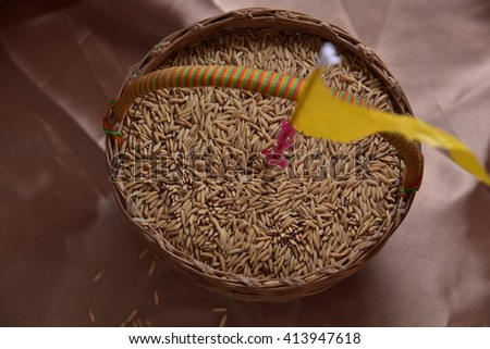 Close up of jasmine rice seed  #413947618
