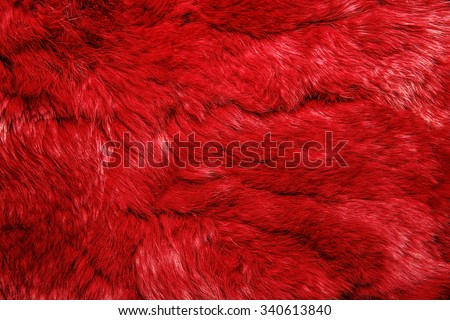 Close-up of lapin colored fur for texture or background