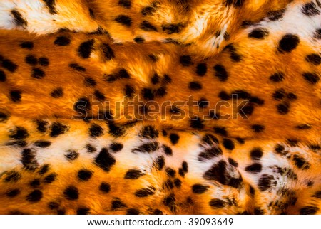 close-up of leopard skin, use as background