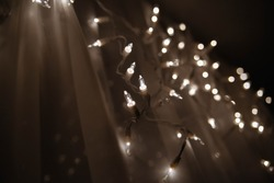 Close-up of lights are hanging on the white curtain on the window and blur lights in the background in a cold tone