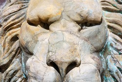 Close up of lion sculpture face with heavy look