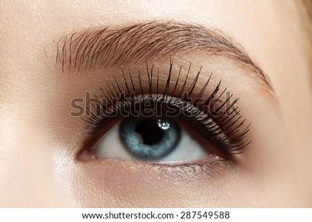 Close-up of make-up eye with long eyelashes and brown eyebrows