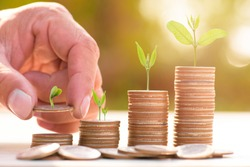 Close up of male hand stacking gold coins with green bokeh background ,Business Finance and Money concept,Save money for prepare in the future.Trees growing on coin