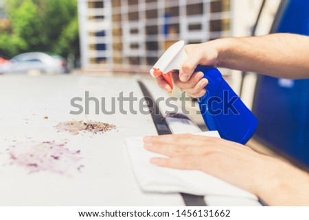 Close up of man cleaning car with cloth and spray bottle, car maintenance concept. Bird shit, drop of bird stain on white car surface, dirty waste of birds dropping splatter. #1456131662