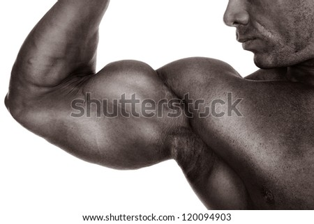 Close up of man's arm showing biceps.isolated on a white background