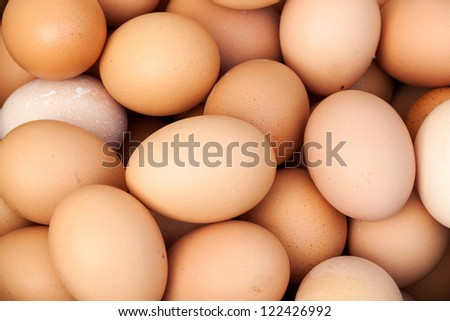 close up of many fresh eggs