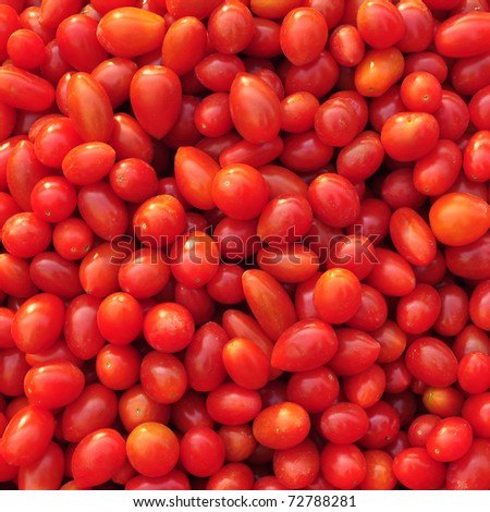 Close up of many fresh red tomatoes