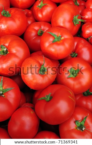 Close up of many fresh red tomatoes big fruit type. - stock photo
