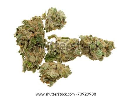 Close up of marijuana (Cannabis) shot with a macro lens