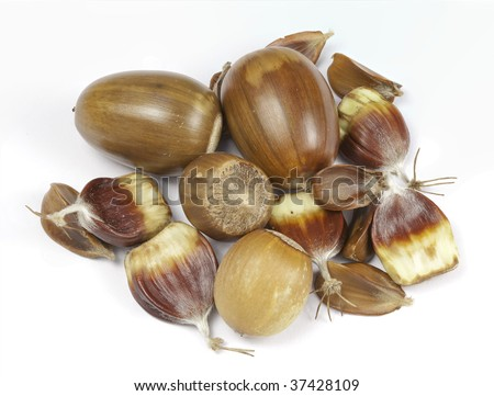 Close up of mixture of wild nuts isolated on a white background
