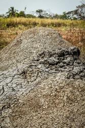 Close up of Mud Volcano in Trinidad and Tobago