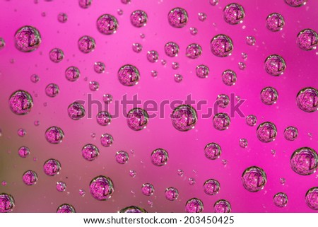 close up of multiple water drops of all sizes with a garden of  pink flowers reflected in each drop