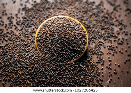 Close up of mustard seeds/Rai or brown mustard seeds in a small plate on a wooden surface in dark Gothic colors. #1029206425