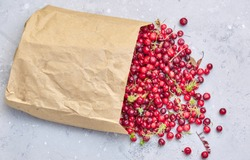 Close-up of natural organic cranberry berries, from a farmers market, in bright, red colors.  Free space for text.