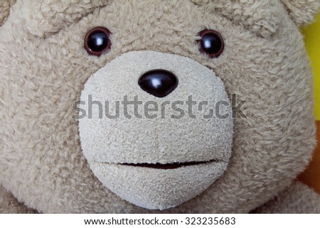 Close up of nice teddybear.