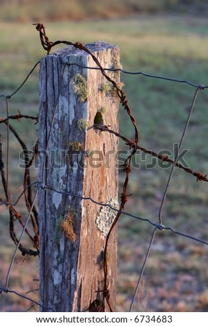 close up of old country rustic fence post with barbed wire in early morning light