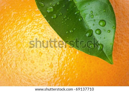 Close-up of orange peel and green leave