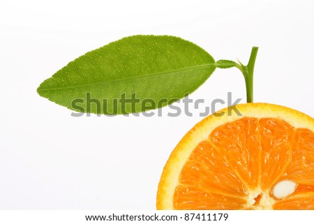 Close up of orange slice