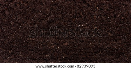 Close-up of organic soil. Can be used as background.